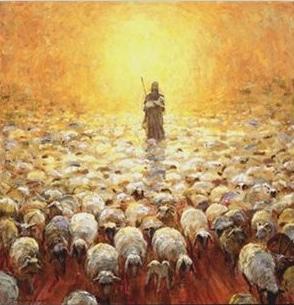 Jesus-Good-Shepherd-follows-sheep