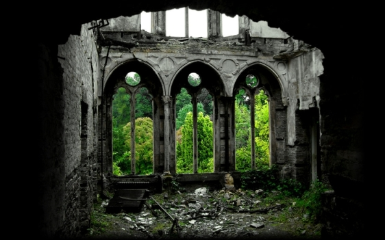 ruins forest church 1440x900 wallpaper_www.wallpaperhi.com_93