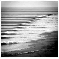 wave31