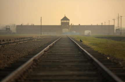 Preparations For The 70th Anniversary Of The Liberation Of Auschwitz-Birkenau